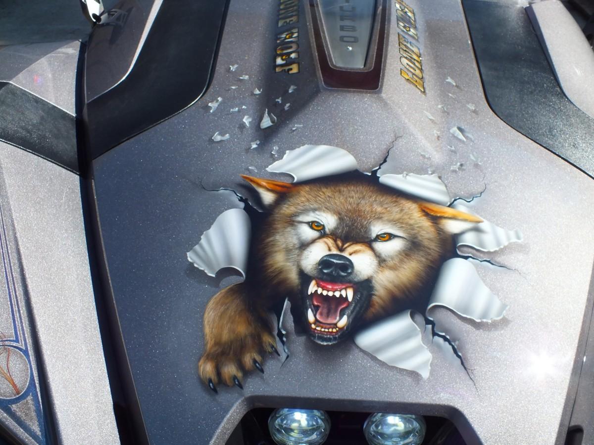 Lone Wolf Hood Art